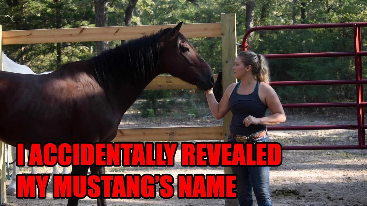 I ACCIDENTALLY REVEALED MY MUSTANG'S NAME
