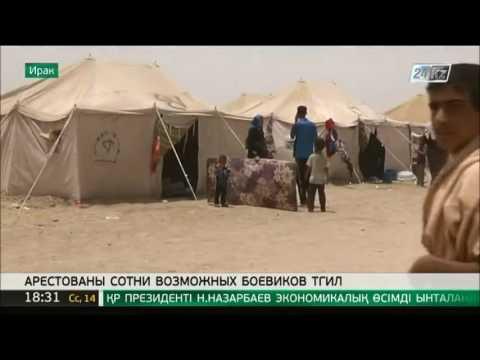В Ираке 546 боевиков ТГИЛ под видом мирных жителей пытались бежать из Эль-Фаллуджи