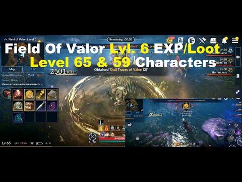 Black Desert Mobile: Field Of Valor Level 6 EXP/Loot Test On Level 65 & 59 Character!