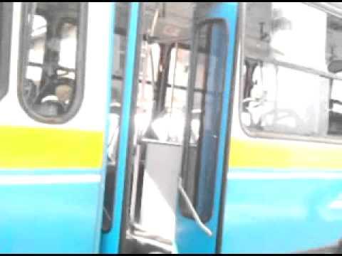 School children bus fight