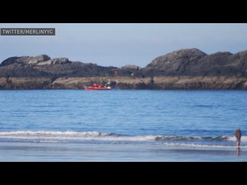 Coast guard searches for missing people near Tofino