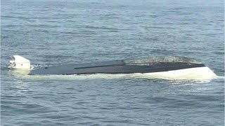 The whale did it! Fishing boat flipped off Jersey coast