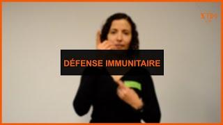 Santé - Défense immunitaire