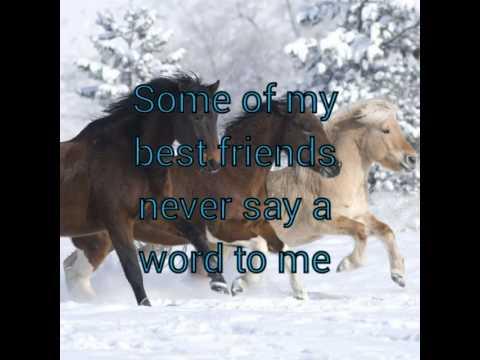 Pferdesprüche