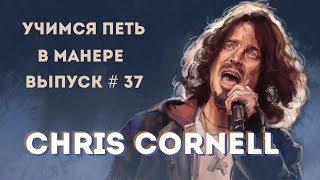 Учимся петь в манере №37. Chris Cornell - Show Me How to Live / The Promise