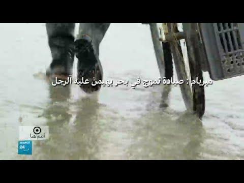 صيادة فرنسية تسبح ضد التيار في ميناء كالي الساحلي  - نشر قبل 2 ساعة