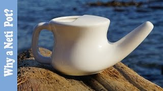 neti-pot-why-when-and-how-often