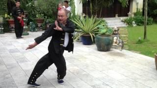 白眉拳綜合手法-李柏成師傅