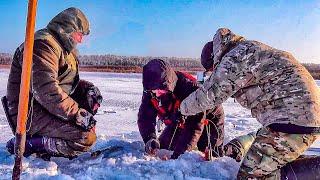 НАКОНЕЦ ТО ПОПАЛИ НА БЕШЕНЫЙ КЛЕВ Лещ на мормышку и комбайны Супер - рыбалка