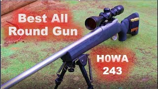 Best All Round Rifle? HOWA 243 review