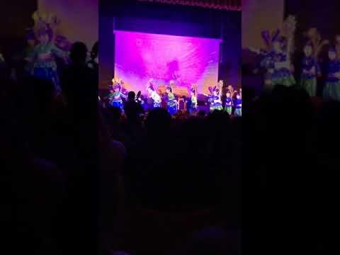 Indus Valley world School Annual concert.  13.1.2018
