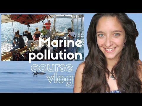 Marine pollution - Vlogs of a marine biologist