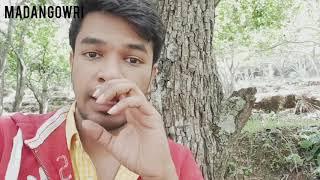 Kodaikanal Trip   Tamil   Madan Gowri   MG Vlog 26   Bison   Kodaikanal