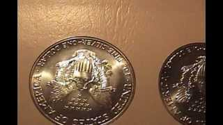 Silver Bullion: American Silver Eagle Collection