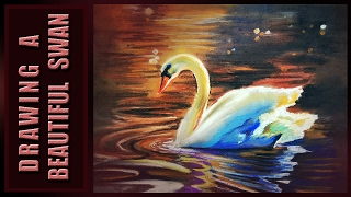 How to draw  swan drawing | drawing of swan |dramatic |realistic|soft pastel technique|trick reveal