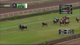 Vidéo de la course PMU DONA MADONA
