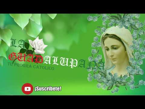 Maria fue coronada LA GUADALUPANA TU PROGRAMA CATOLICO