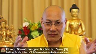Bodhisattva Vows [3]