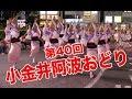 阿波おどり大会が40回目を迎えた武蔵小金井駅周辺の熱い7月29日