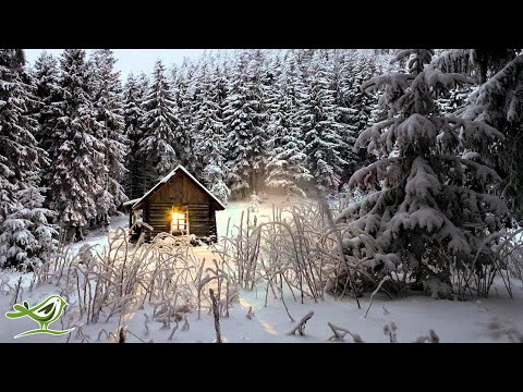 Relaxing Winter Piano Music: Meditation, Sleep, Relaxation &