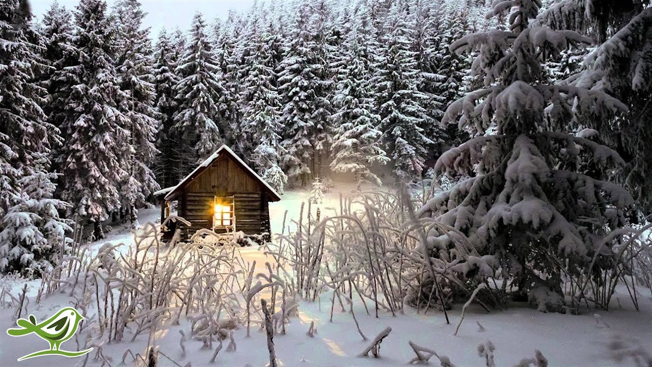 Christmas Desktop Wallpaper Animated Free Relaxing Winter Piano Music Meditation Sleep Relaxation