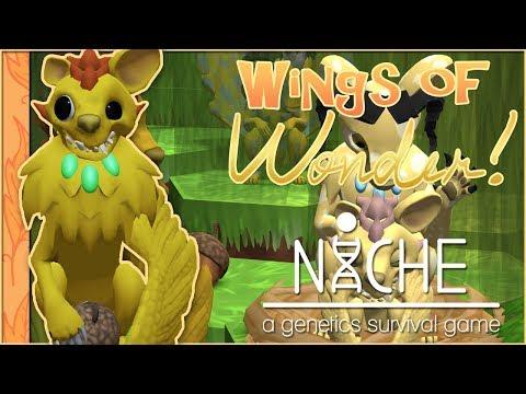 Crash-Landing of Wonderous Wings!! 🐦Niche: Wings of Wonder • #20