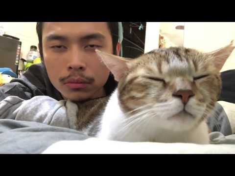 Asian guy with cat dancing to Drake...