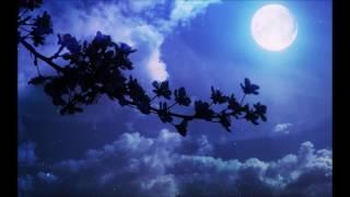月恋花 - 諫山実生