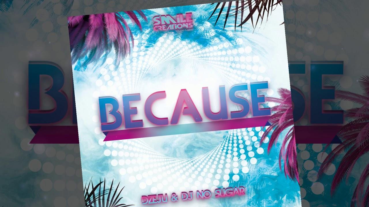 Download Dżeju & DJ No Sugar -  Because  (Extended Mix)