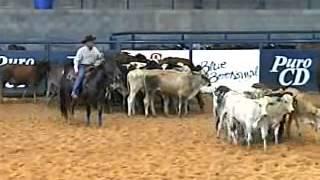 Baixar Derby ANCA 2007 - Campeão Aberta