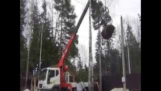 Посадка деревьев манипулятором(Посадка деревьев крупномеров в коттеджном поселке, с помощью манипулятора Daewoo Novus c КМУ Kanglim1256. Аренда манип..., 2013-05-05T18:44:00.000Z)