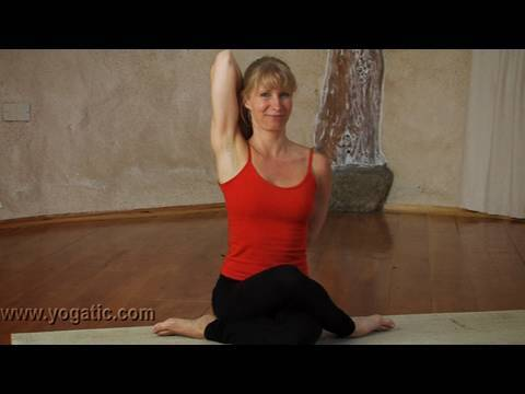 Cow Face Pose,Yoga