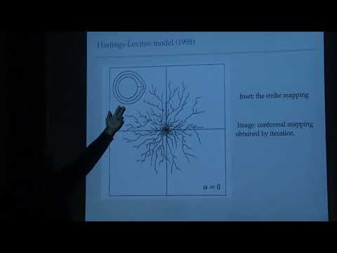 Branched conformal structures and the Dyson superprocess - Govind Menon