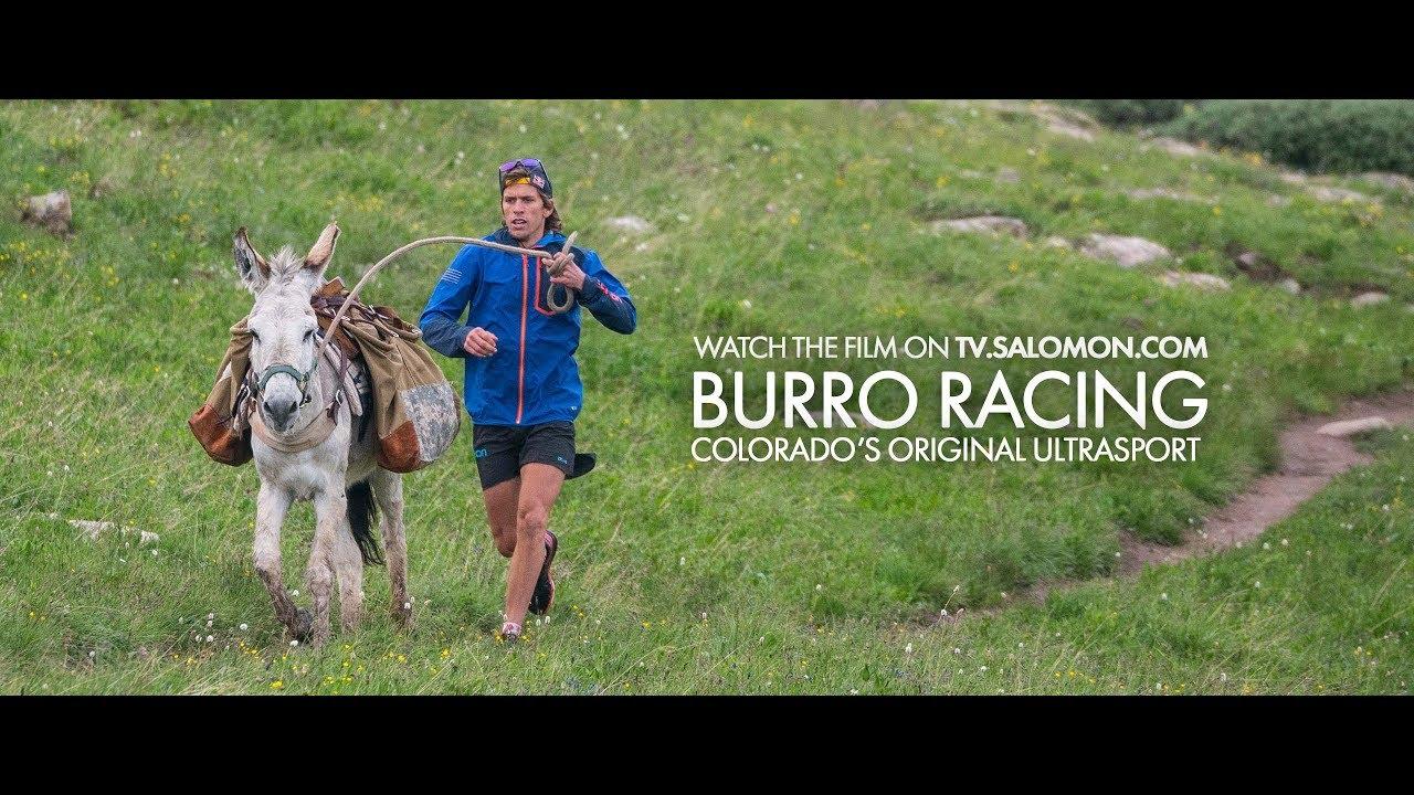 Burro | Salomon TV