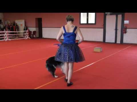 Béa & Lagoon Des Embruns Islais Dog Dancing-OBR 18/03/2017