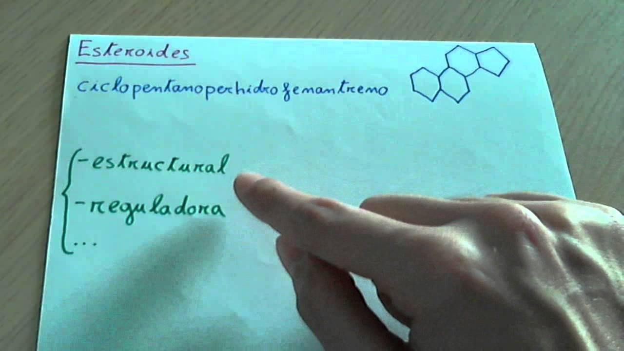 que son los esteroides en biologia