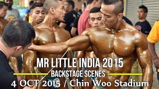 Gambar cover MR LITTLE INDIA 2015: Backstage Scenes