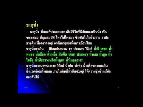 แนวคิดทฤษฏีการแพทย์แผนไทย