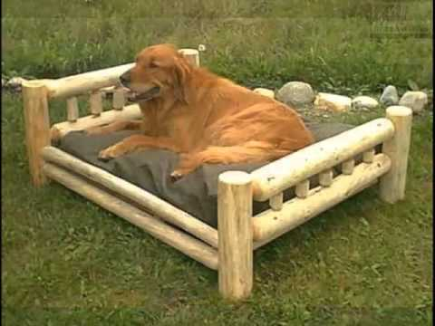 Pictures Of Dog Beds For Large Dogs | Dog Beds For Large Dogs Dogs