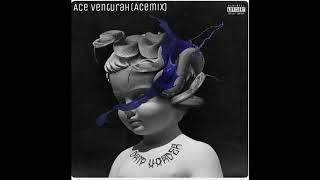 Ace Venturah Never Recover AceMix