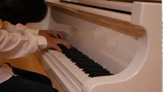 Maxime le Forestier - San Francisco - Piano