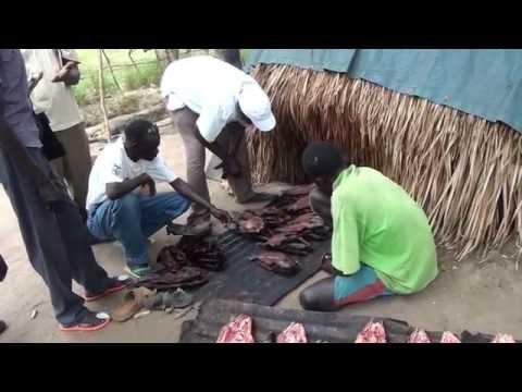 Fisherfolk in the Sudd of South Sudan (Part 2) Terakeka 2012