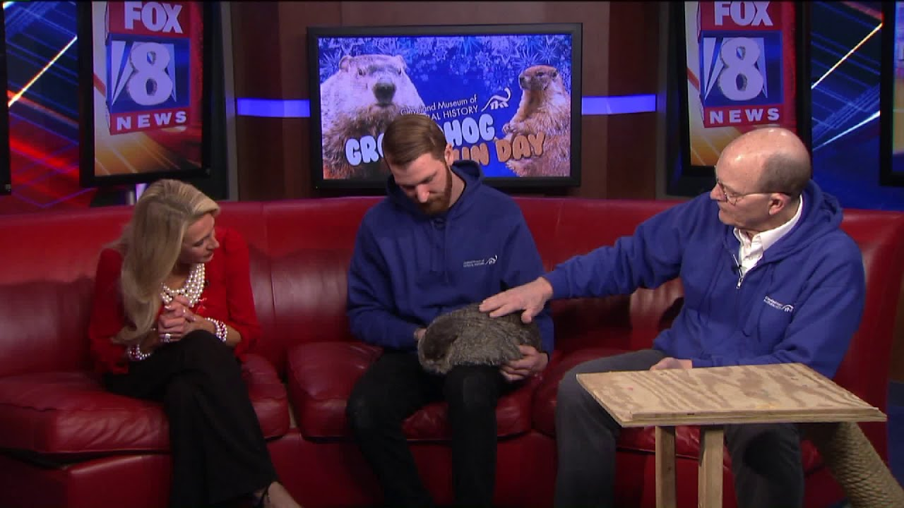 Celebrate Groundhog Day At The Cleveland Museum Of Natural History