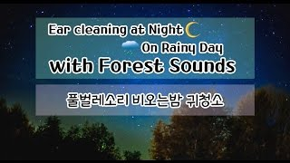 asmr 귀청소 풀벌레소리 야외 비오는날 귀청소 no talking ear cleaning on rainy day with forest sounds at night