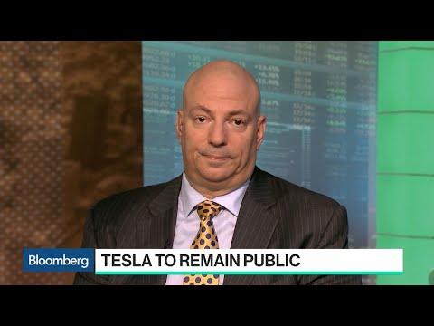 Tesla Stock Falls As CEO Elon Musk Scraps Plans For Model S ...