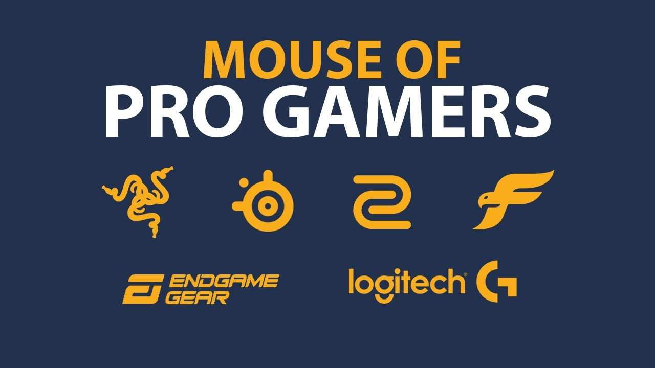 The Mouse Choice of the BEST 350 CSGO PROS