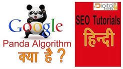 What is the Google Panda Algorithm and  latest Update| Tips to escape from Penalty of Panda| Hindi