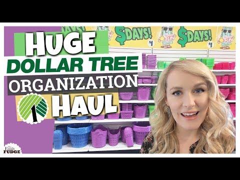 DOLLAR TREE ORGANIZATION HAUL || Dollar Tree Ideas & Tips || The Family Fudge