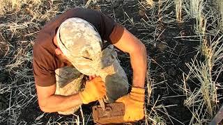 Немецкая каска, кумулятивная мина и другие находки металлоискателем