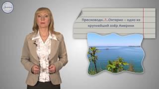 Русский 6 Род несклоняемых имён существительных